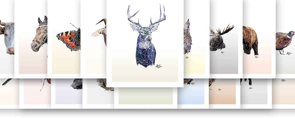 Nordiska djur – Boete
